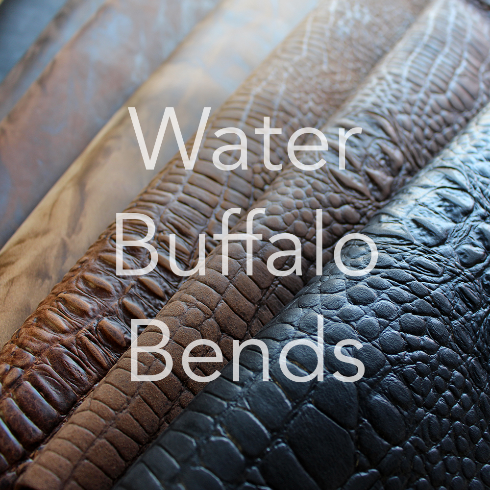 Water Buffalo Bends
